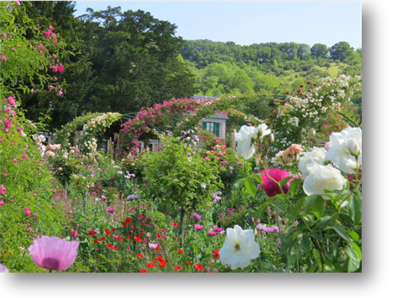 Giverny Normandy Tour June 2015